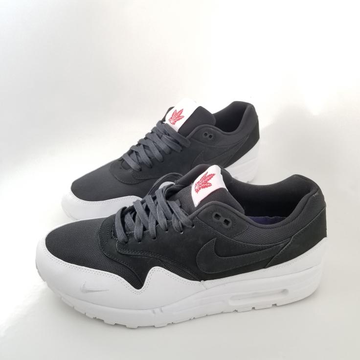 Toronto Nike Air Max The 6